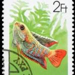 fish-stamp1