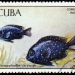 fish-stamp2
